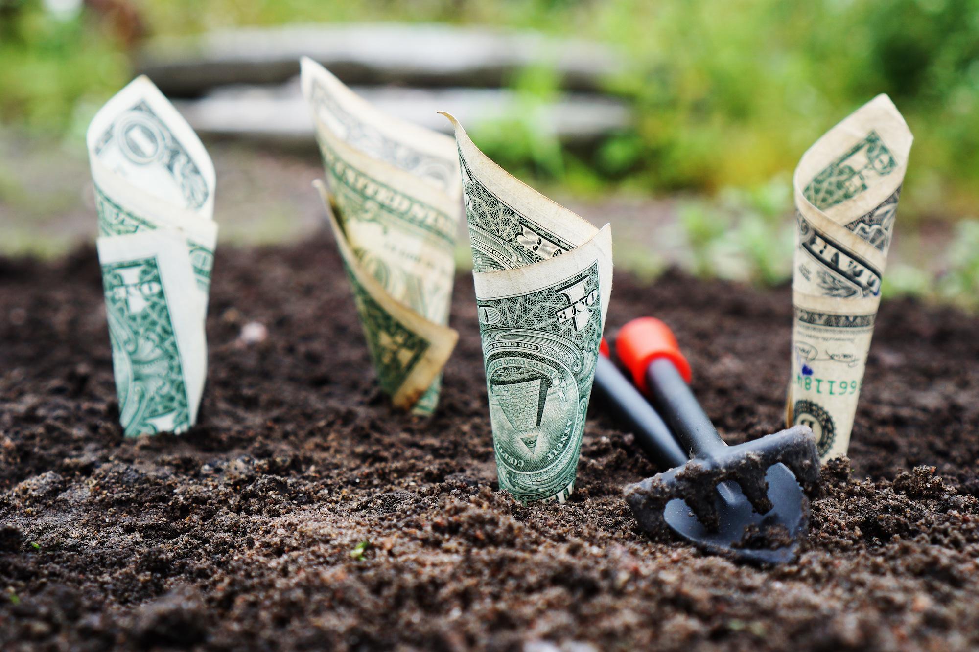 Cartes, offres d'épargne, crédit à la consommation ou immobilier, quelle banque en ligne est la plus complète?